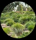 Garden Maintenance Caulfield