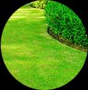 Garden Services Toorak